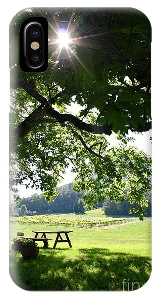 Vineyard In Georgia IPhone Case