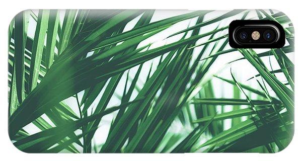 Vintage Palms IIi IPhone Case
