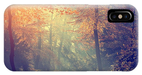 Hiking Path iPhone Case - Vintage Photo Of Autumn Forest by Dark Moon Pictures
