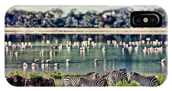East Africa iPhone Case - Vintage Style Image Of Zebras And by Travel Stock