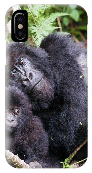 Virunga Mountains, Rwanda, Africa Phone Case by Karen Ann Sullivan