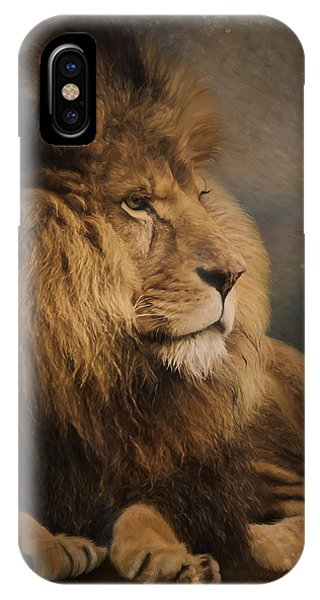 IPhone Case featuring the painting Wait For The Answer - Wildlife Art by Jordan Blackstone