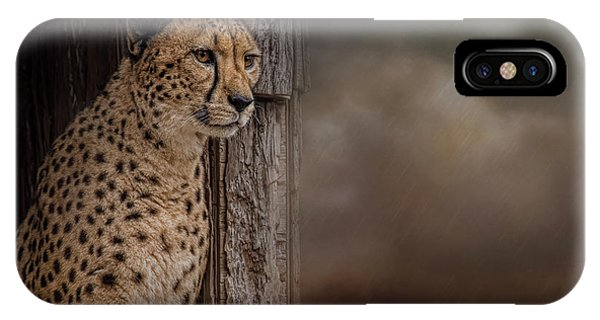 Waiting Out The Storm IPhone Case