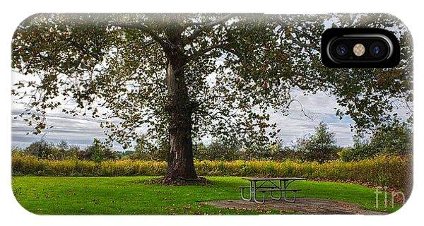 Walnut Woods Tree - 1 IPhone Case