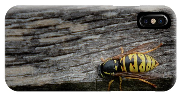 Wasp On Wood IPhone Case