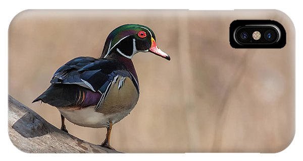 Watchful Wood Duck IPhone Case