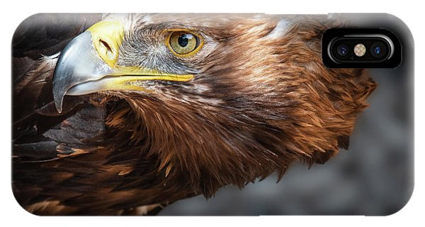 Watching Eagle IPhone Case