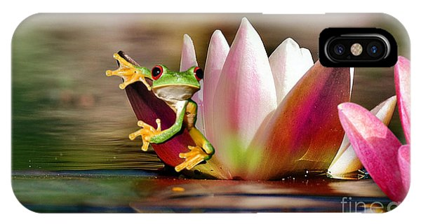 Water Lily And Frog IPhone Case
