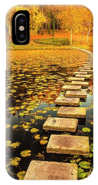 Way In The Lake IPhone Case