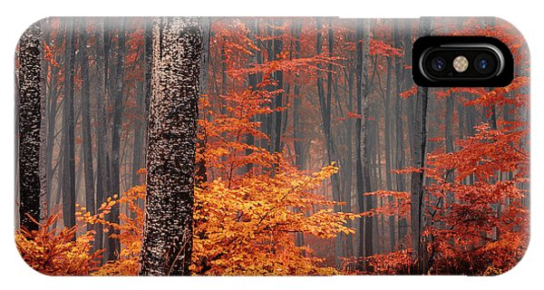 Autumn iPhone Case - Welcome To Orange Forest by Evgeni Dinev