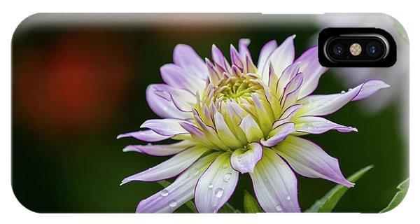 Wet Petals Dahlia IPhone Case