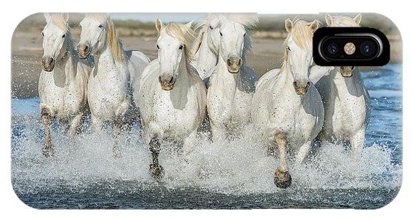 Delta iPhone Case - White Camargue Horses Galloping Along by Vadim Petrakov