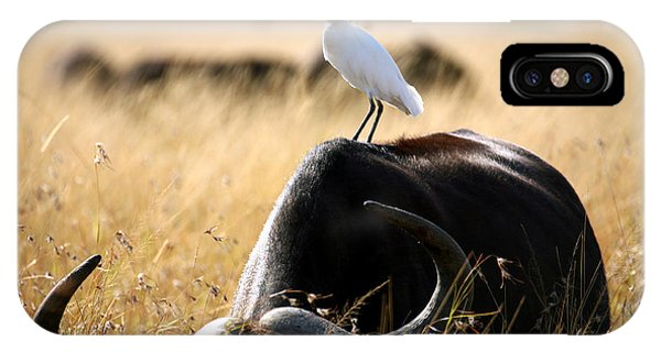 East Africa iPhone Case - White Cattle Egret Hitching A Ride On by Paul Banton