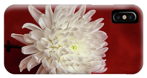 White Flower On Red-1 IPhone Case