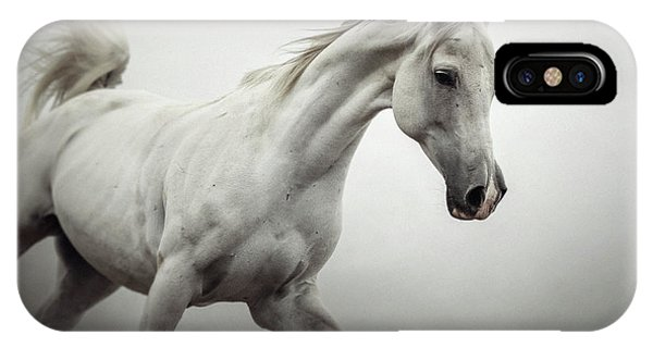 IPhone Case featuring the photograph White Horse On The White Background Equestrian Beauty by Dimitar Hristov