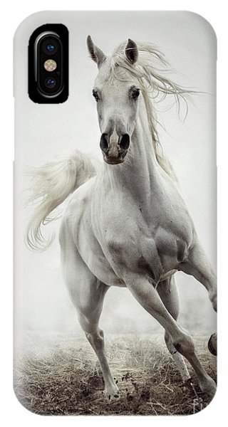 IPhone Case featuring the photograph White Horse Running In Winter Mist by Dimitar Hristov