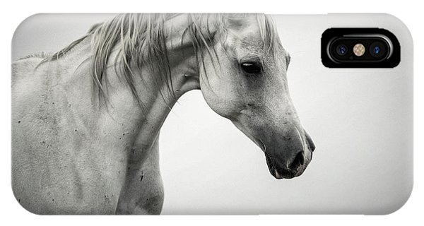IPhone Case featuring the photograph White Horse Winter Mist Portrait by Dimitar Hristov