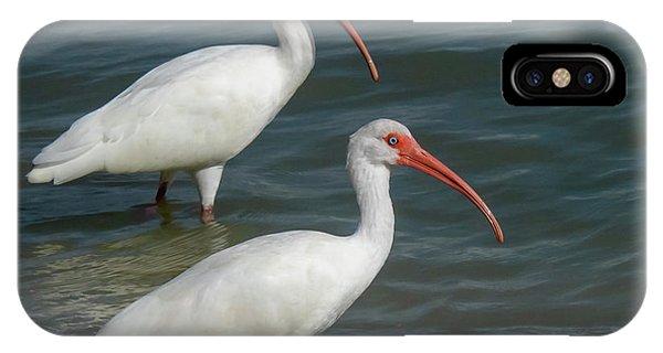 White Ibis Pair IPhone Case