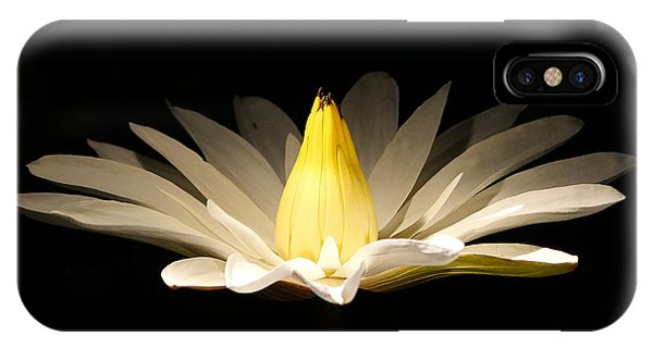 White Lily At Night IPhone Case