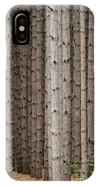 White Pines IPhone Case