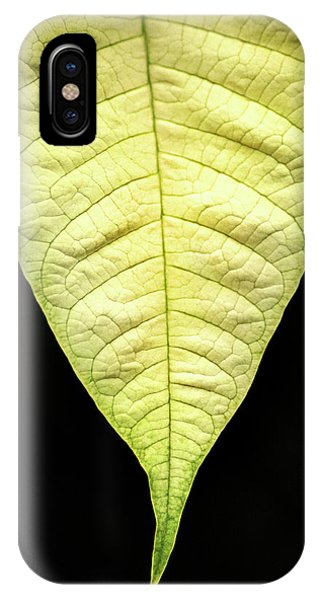 White Poinsettia Leaf IPhone Case