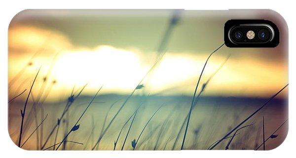Serenity iPhone Case - Wild Grasses At Golden Summer Sunset by Cienpies Design
