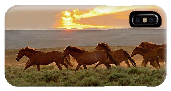 Wild Horses At Dusk IPhone Case