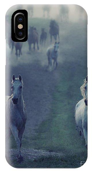 Grey Skies iPhone Case - Wild Horses by Conrado