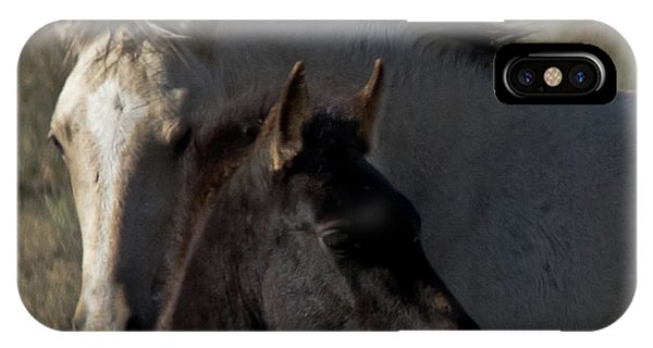 Wild Mustangs Of New Mexico 4 IPhone Case