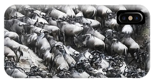 iPhone Case - Wildebeest Scramble Out Of The Mara River by Jane Rix