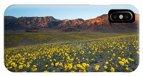 Death Valley iPhone Case - Wildflower Super Bloom In Spring, Death by Phitha Tanpairoj