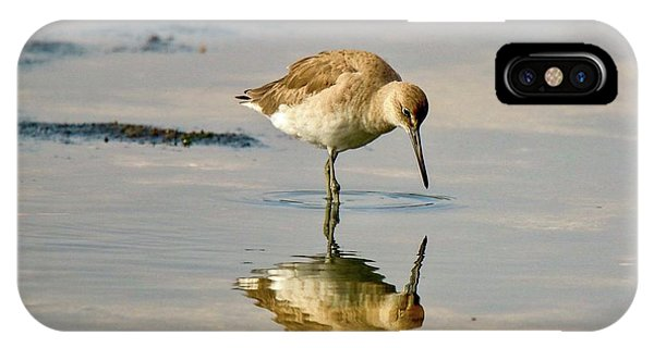Willet Sees Its Reflection IPhone Case