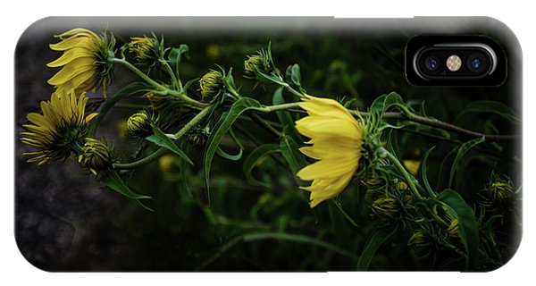 Horicon Marsh iPhone Case - Windy Weeds by Lauri Novak