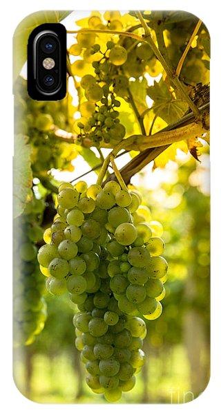 Summer Fruit iPhone Case - Wine Season by Rzoze19