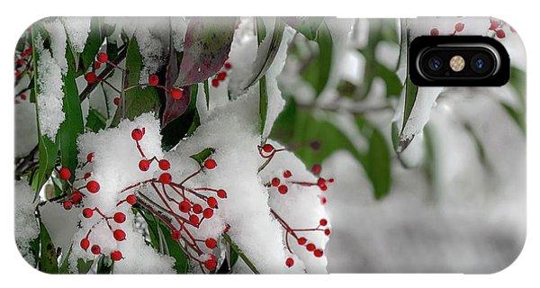 Winter Berries IPhone Case
