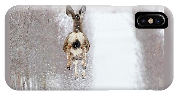 Mule Deer iPhone Case - Winter Bounce by Mike Dawson