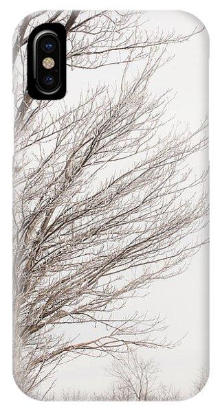 Winter Hoarfrost IPhone Case