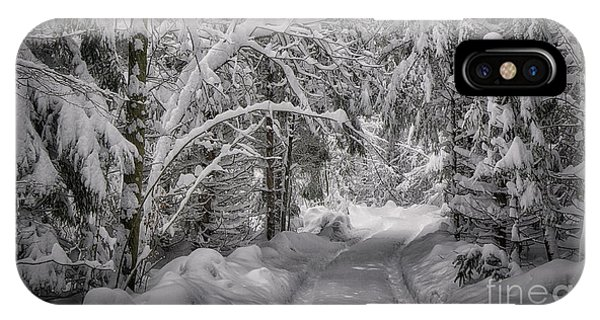 IPhone Case featuring the photograph Winter In The Forest by Edmund Nagele