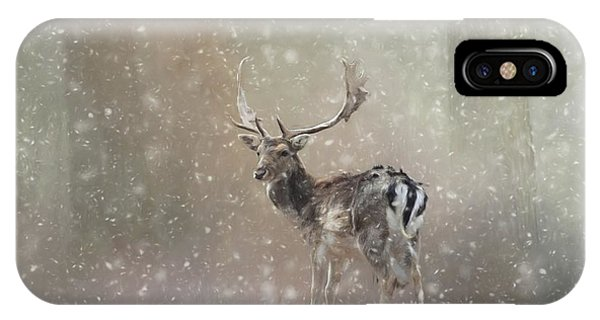 Winter In The Woods IPhone Case