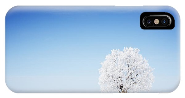 Clear iPhone Case - Winter Tree In A Field With Blue Sky by Dudarev Mikhail