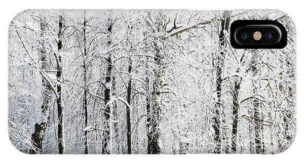 Fairytales iPhone Case - Winter Trees by Lenikovaleva