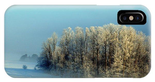 Winter's Heavy Frost IPhone Case