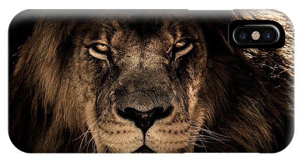 Wise Lion IPhone Case
