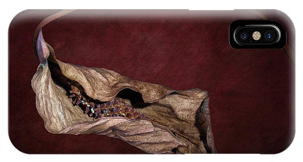 Hybrid iPhone Case - Withered Beauty by Tom Mc Nemar