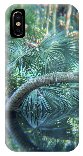 Witnessing Nature IPhone Case