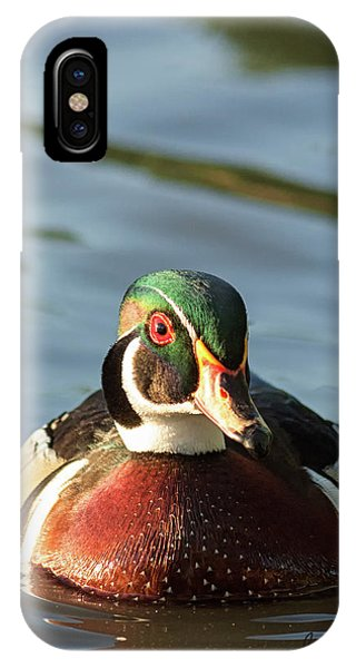 Wood Duck 3 IPhone Case