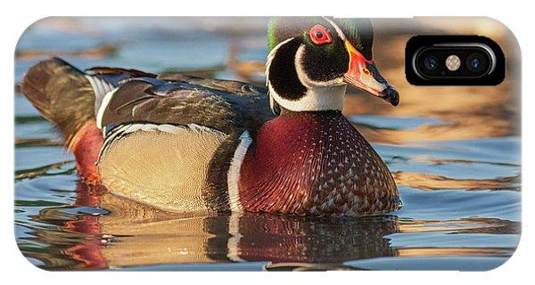 Wood Duck 4 IPhone Case