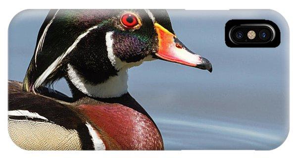 Wood Duck Portrait IPhone Case