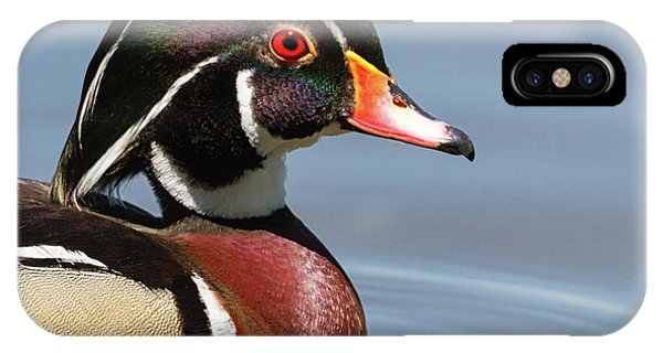 Wood Duck Portrait IPhone Case