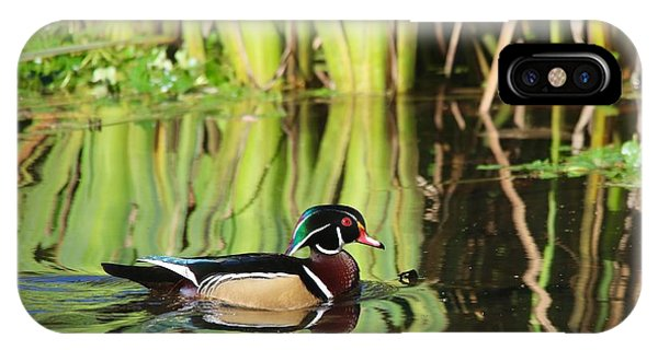 Wood Duck Reflection 1 IPhone Case
